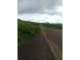 FOR SALE!! This is 1.5 hectares with individual  land certificate available