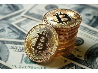 Buy and Sell Crypto Currencies (Bitcoins, Etherum, Bitcash, Monero) at best rates