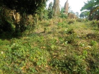 Land for sale ~~~ 400m2 for small soppo for sale