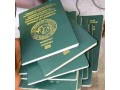 for-id-cards-driving-license-and-passports-worry-no-more-e-must-comot-small-2