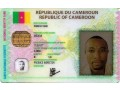 for-id-cards-driving-license-and-passports-worry-no-more-e-must-comot-small-1