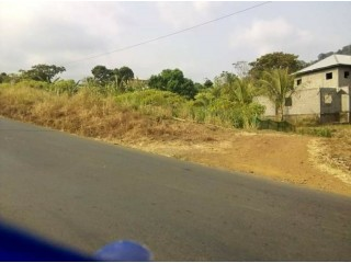 Direct tar and roadside land with land title available for sale