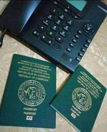 dont-wait-for-your-original-id-cards-passports-driving-license-in-vain-big-3