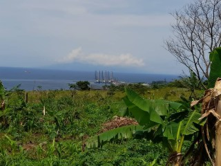 Affordable lands in limbe for your developments